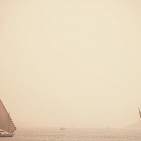The Nile by Kajsa Karlsson - Transportation Boats ( water, sand, luxor, sailing, white, sailboat, the nile, egypt, river )