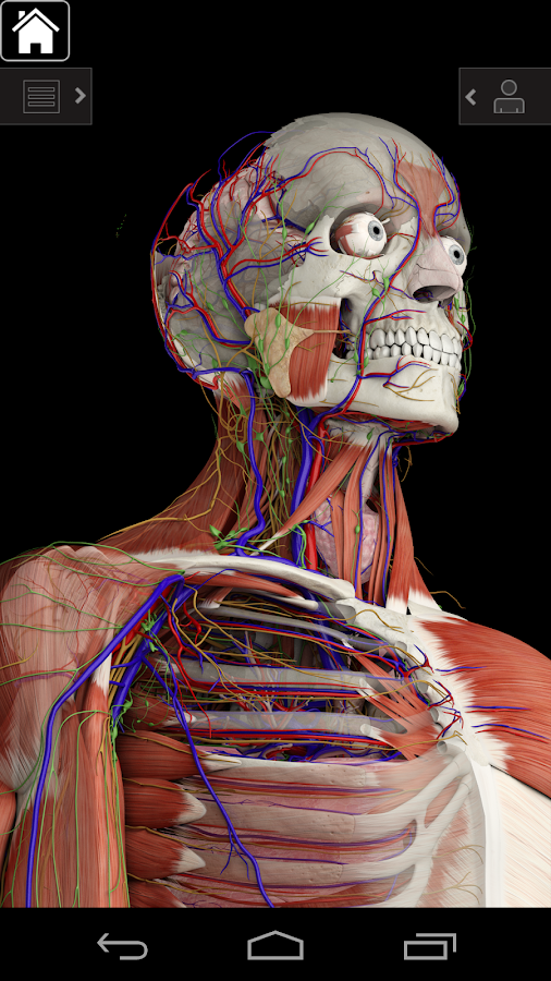 Essential Anatomy 3 APK Cracked Free Download | Cracked Android Apps