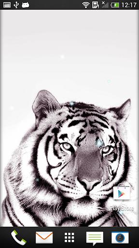 老虎 動態壁紙
