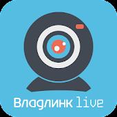 Владлинк live