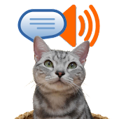 Talk & Play SMS
