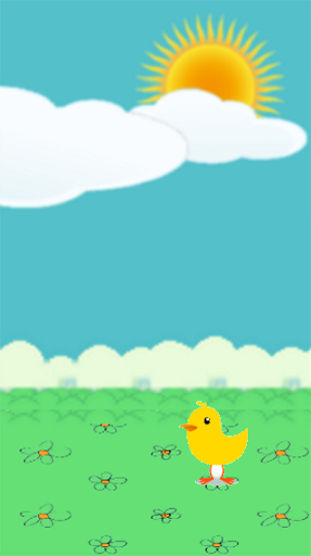 Acemi Kuş