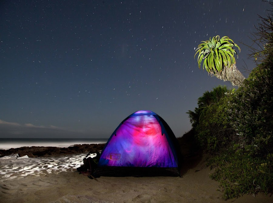 camping under the stars by Henrico Muller - Landscapes Travel ( adventure, aloe, naturewild, nature, camping, tent, long exposure, night, beach, travel, darkness )
