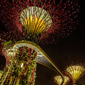 Light Plant at park by Hafiz Hj Ismail - City,  Street & Park  Amusement Parks ( building, park, power, night, light, nightscapes, nightscape )