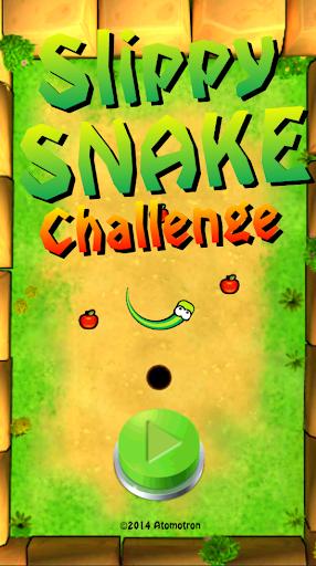 Slippy Snake Challenge