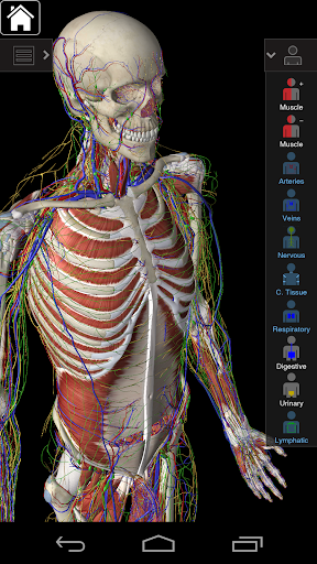 Essential Anatomy 3 for Orgs. 1.1.3 screenshots 2