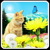 猫とタンポポ ライブ壁紙