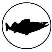 Pinturi - the fishing diary