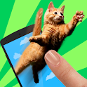 Meow: Catch Flying Cats icon