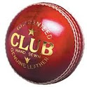 Cricket Mania logo