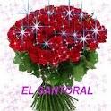EL SANTORAL icon