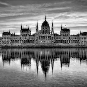Early morning in Budapest by Florin Ihora - Black & White Buildings & Architecture ( parliament, reflection, building, budapest, black and white,  )