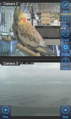 IP Camviewer for Elro - screenshot