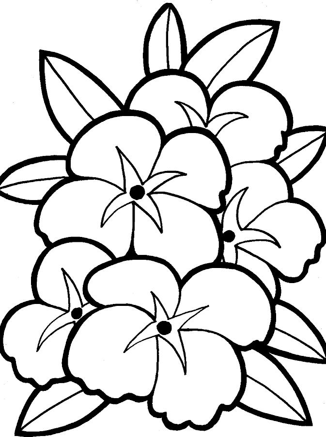 Flowers Coloring - screenshot