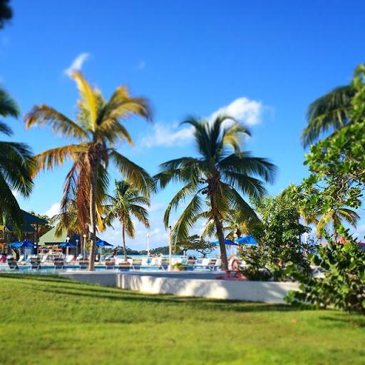 10831988_302654533256653_147679771_n - Jolly Beach Resort