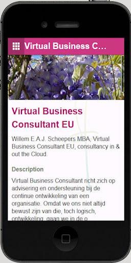 Virtual Business Consultant EU