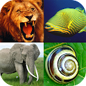 Animals Encyclopaedia icon