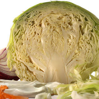Basic Coleslaw.