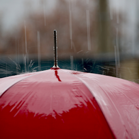 Rainy Day by Branislav Rupar - Artistic Objects Other Objects ( water, red, winter, autumn, umbrella, drops, rain )