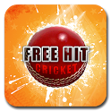 Free Hit Cricket icon