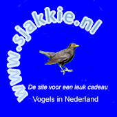 Vogels in Nederland