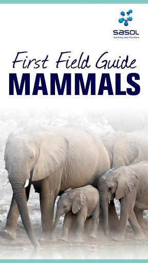 Sasol Field Guide Mammals