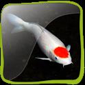 Koi Fish 3D icon