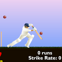 Cricket Game - EASY icon