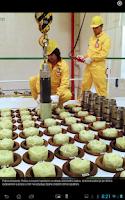 Screenshot of Jaderná energie a energetika