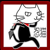 Cat Nin