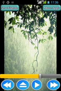 Rain Forest Sounds