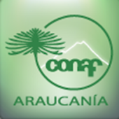 National Parks in Araucania