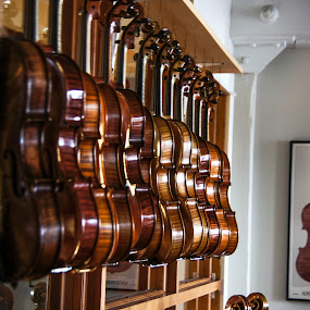 Craftsmanship by Tammy Drombolis - Artistic Objects Musical Instruments ( , object, musical, instrument )