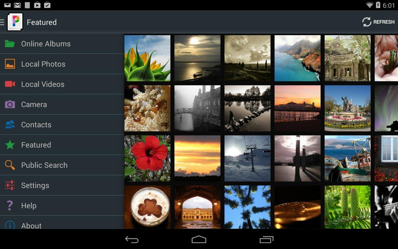 PicsPro for Picasa, Google+ - screenshot