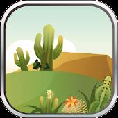 Cactus Puzzles