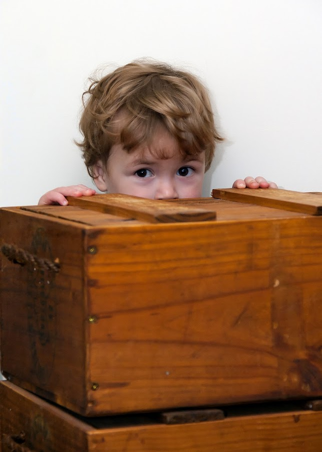 Hide and seek by Paul Weller - Babies & Children Toddlers (  )