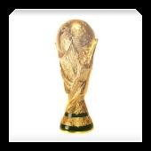 Guia del Mundial de Fútbol