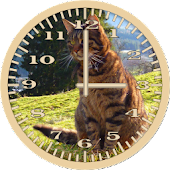 Cat 6 Tabby Analog Clock