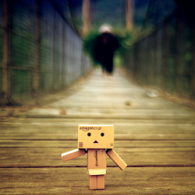 Danbo do not Cross by Mas Bagus - Artistic Objects Still Life ( #danbo #people #brige #landscape #natural #morning )