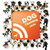 Dog Training News