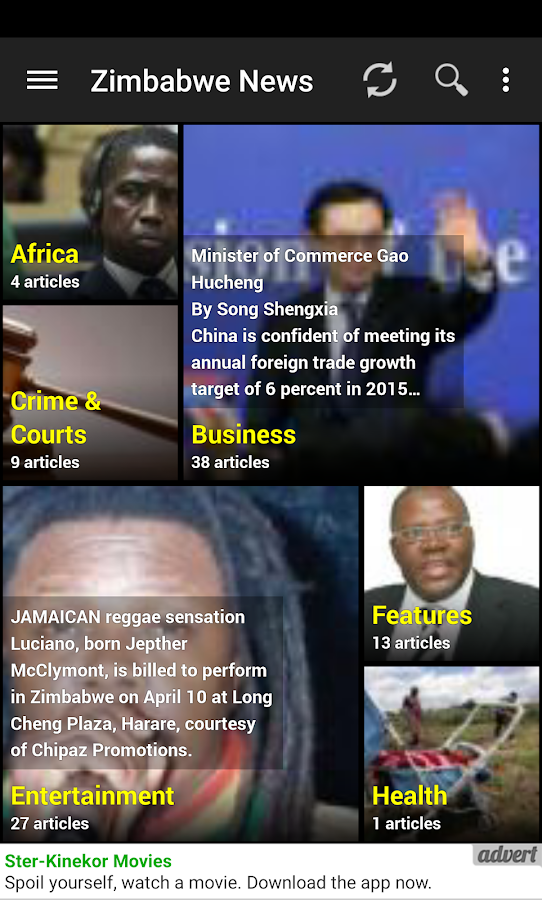 The Zimbabwe News- screenshot