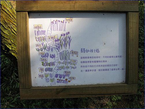 [食記] 薰衣草森林