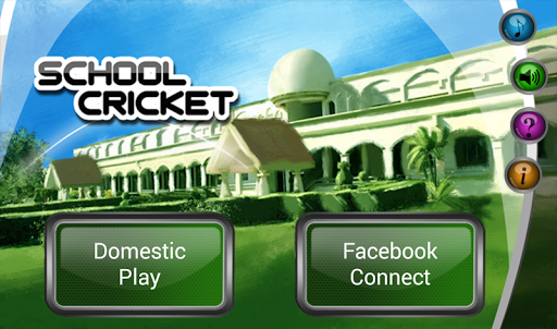 School Cricket