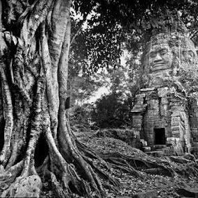Angkor by Roberto Nencini - Black & White Buildings & Architecture