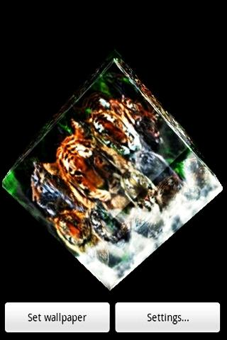 Tiger 001 - screenshot