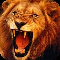 Lion 3D Live Wallpaper icon