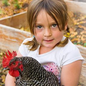 Best Friends by RaeLynn Petrovich - Babies & Children Children Candids ( farm, child, chicken, ranch, little girl, girl, pet, rooster )