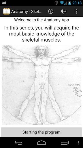 Anatomy - Skeletal Muscles