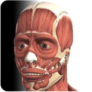 Visual Muscles 3D for Android