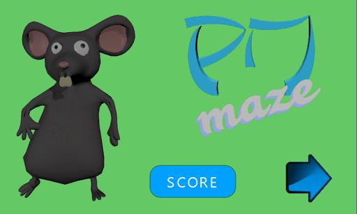 PM-Maze 3D